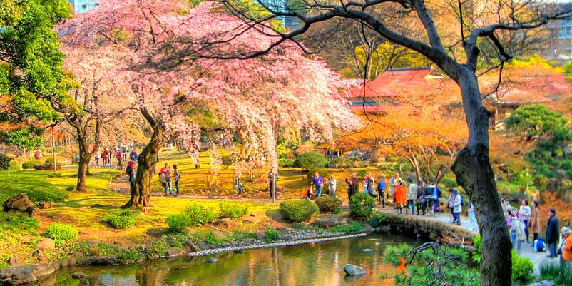 Koishikawa Korakuen Japanse tuin