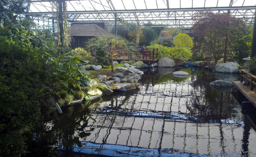 Japanese Water Garden in Naaldwijk