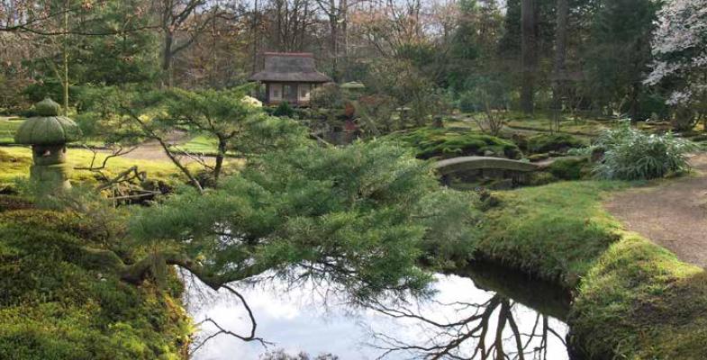 Japanse tuinen in Nederland