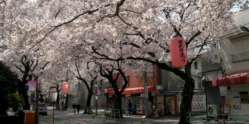 Tokio stedentrip