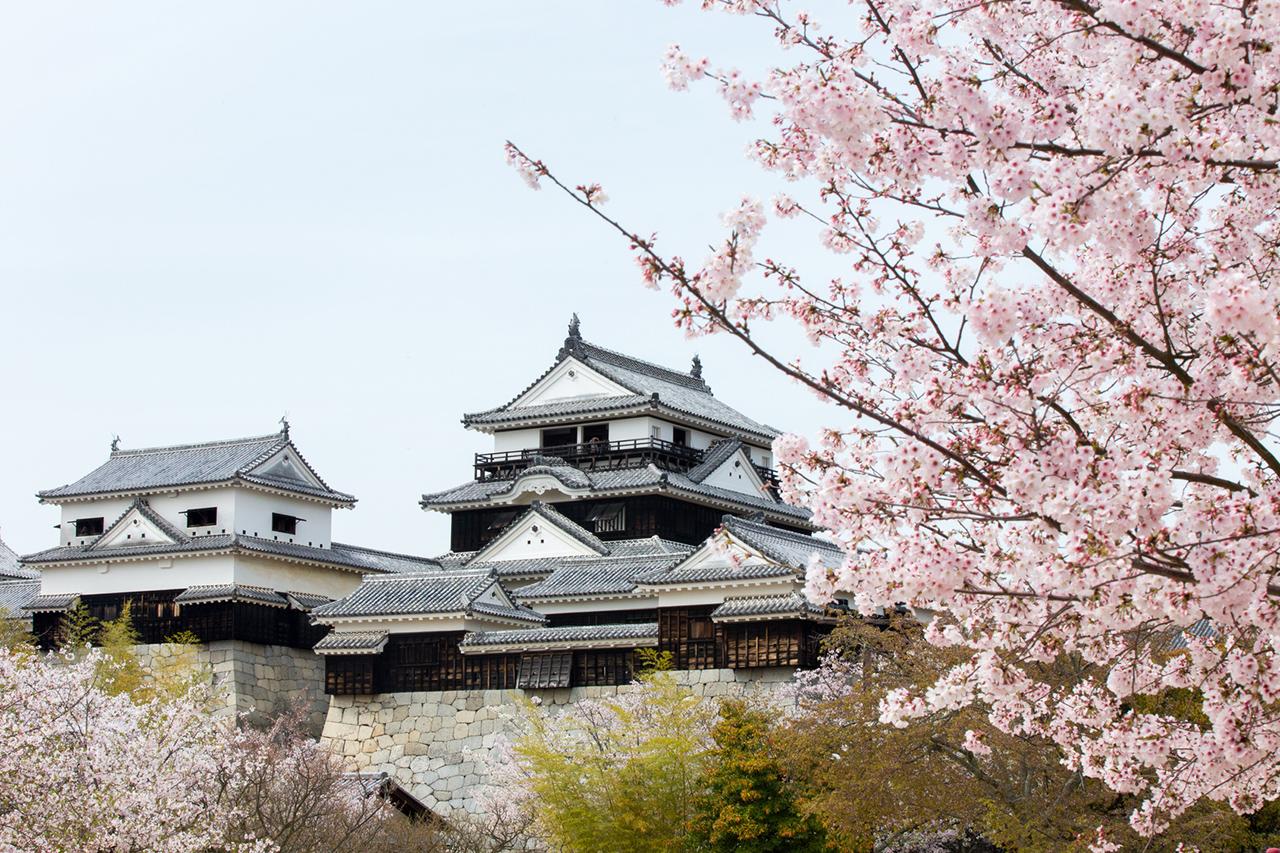 Matsuyama kasteel Japan