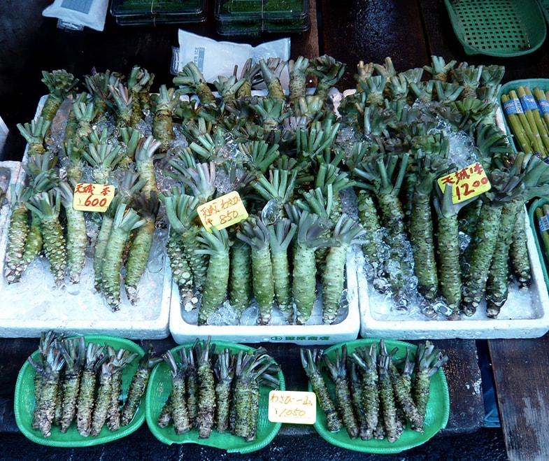 Wasabia japonica wortels