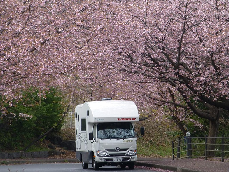 Camperreizen in Japan