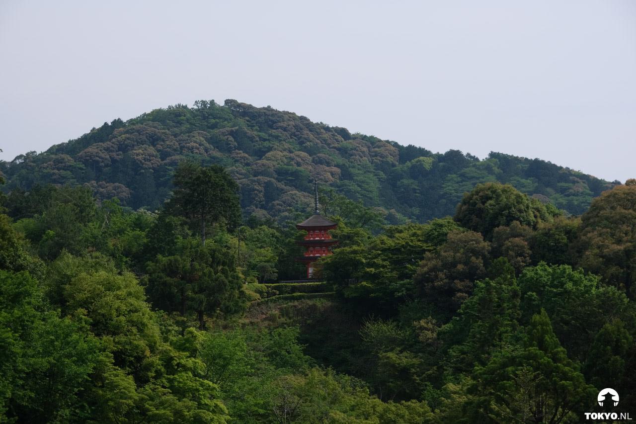 Geschiedenis en tempels in Kyoto