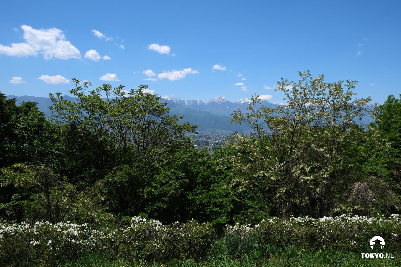 Bergen gezien vanaf het Alpenpark