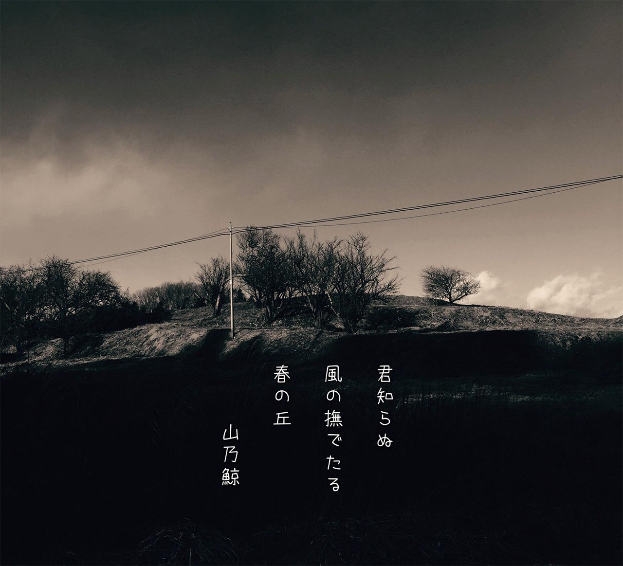 Japanse Haiku op foto