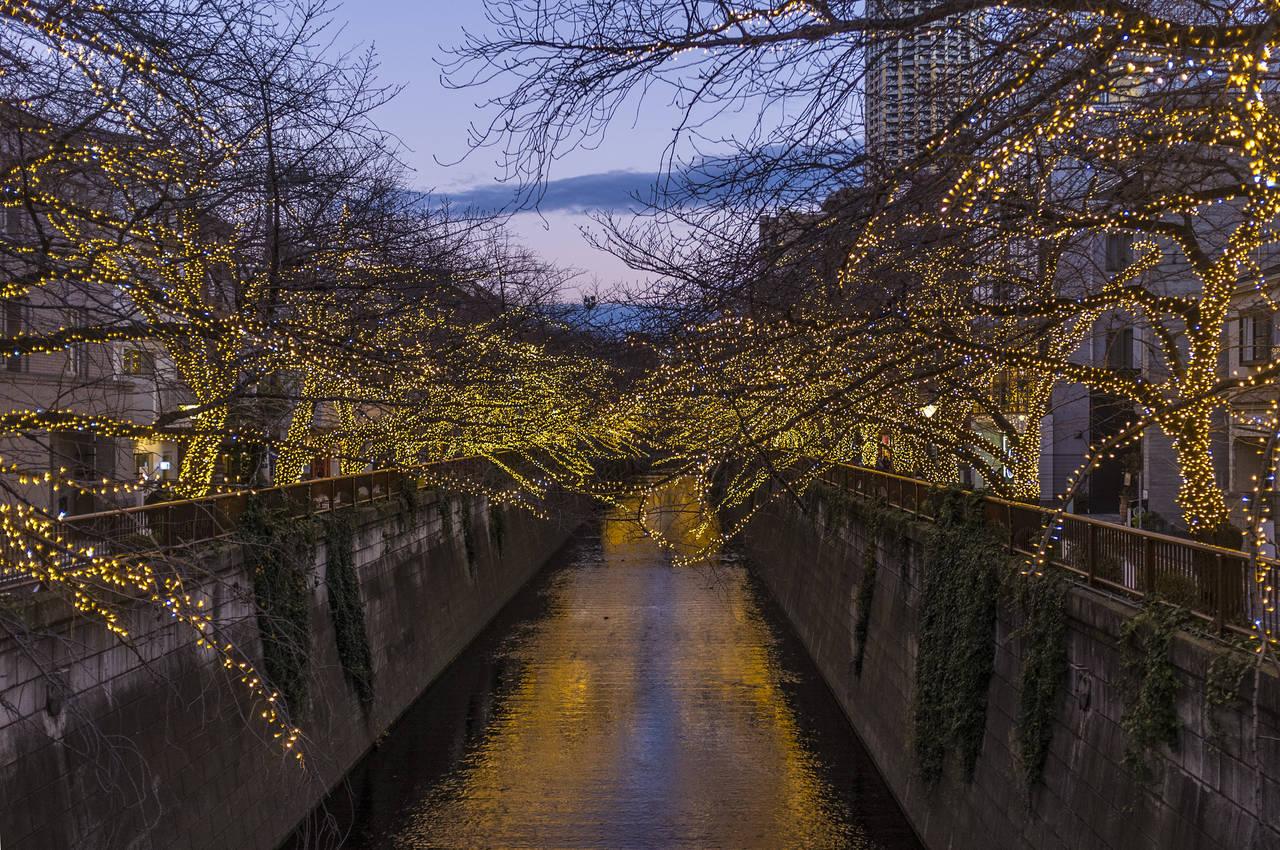 De Meguro rivier in nakameguro