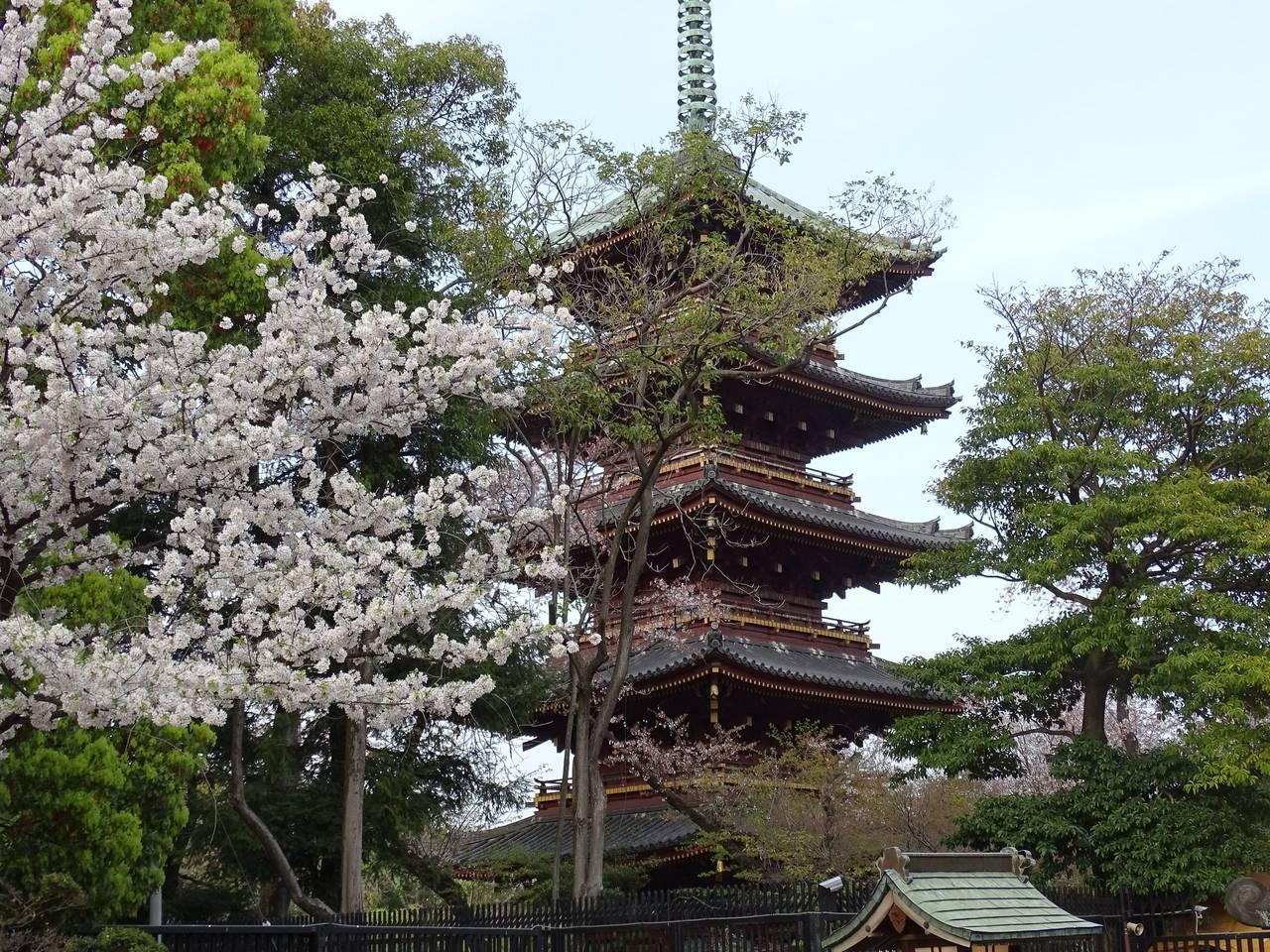 Toeizan Kan'ei-ji tempel