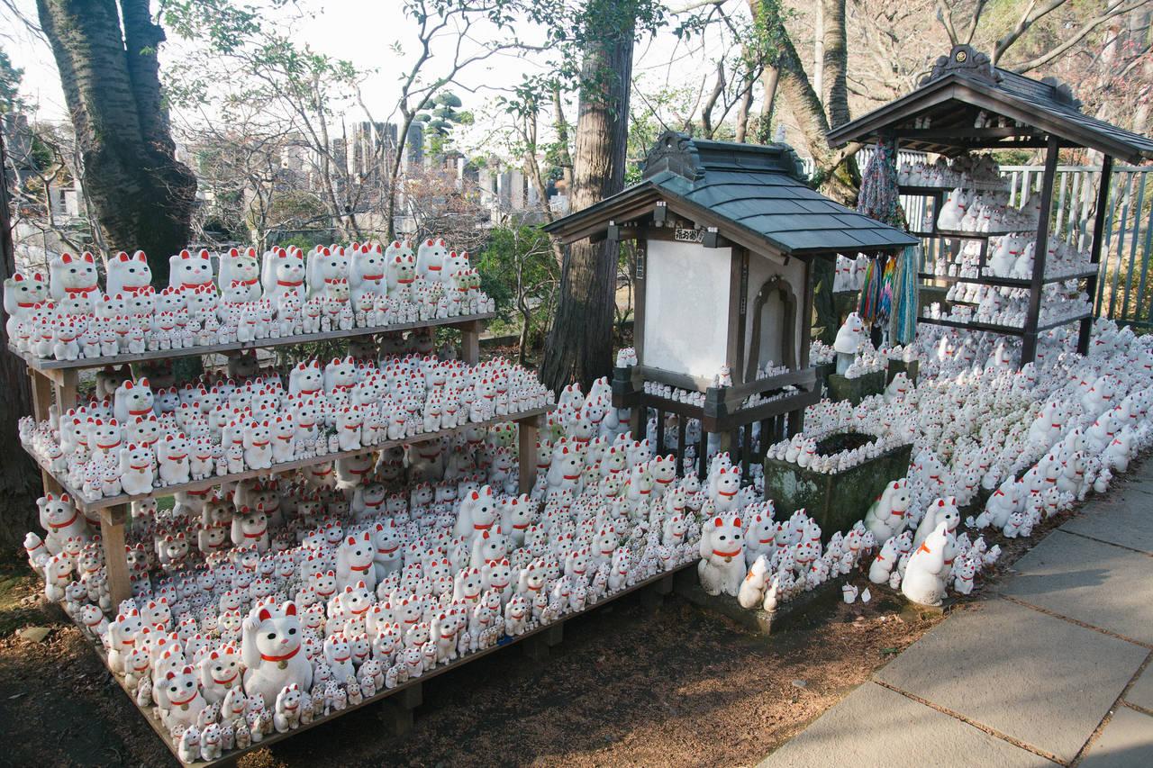 Kattenbeeldjes bij Gotoku-ji