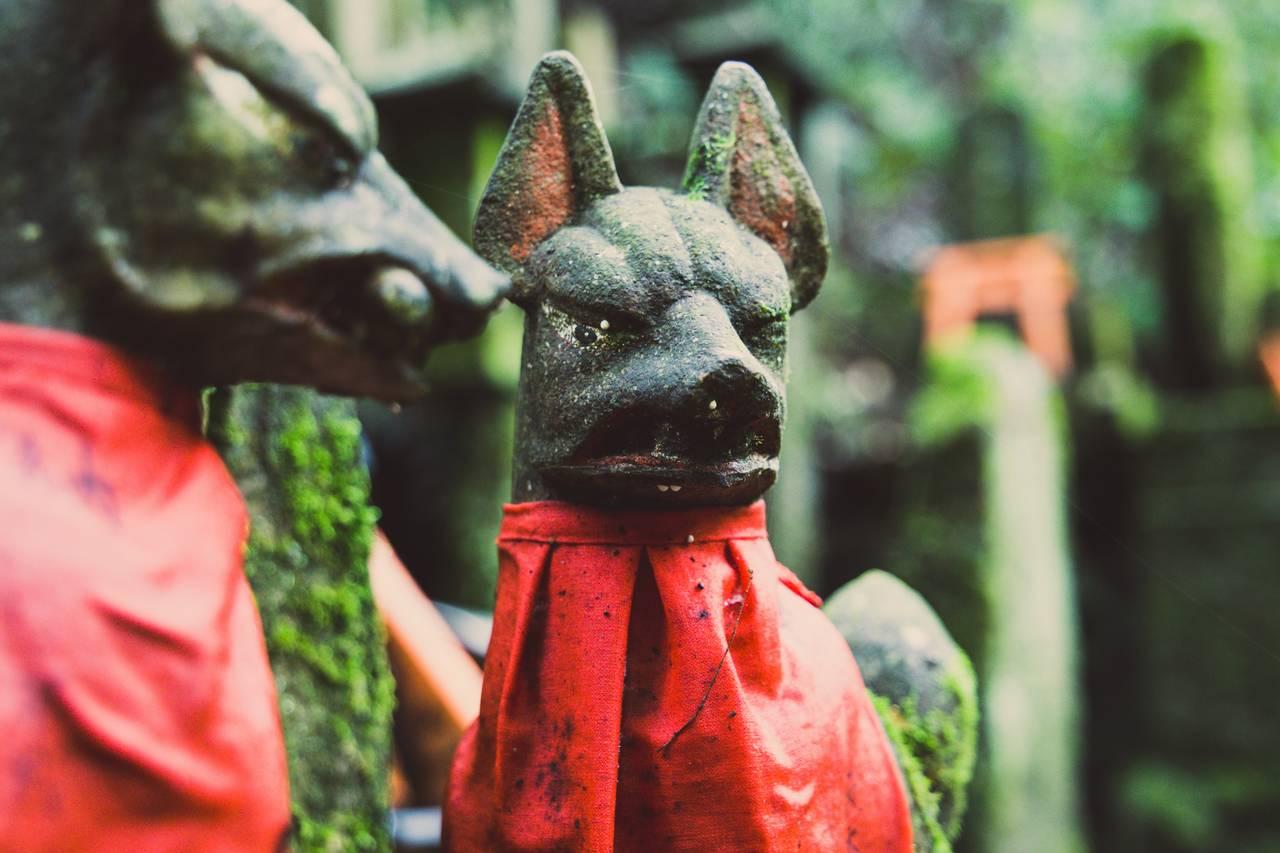 Standbeeld van vossen, kitsune genaamd