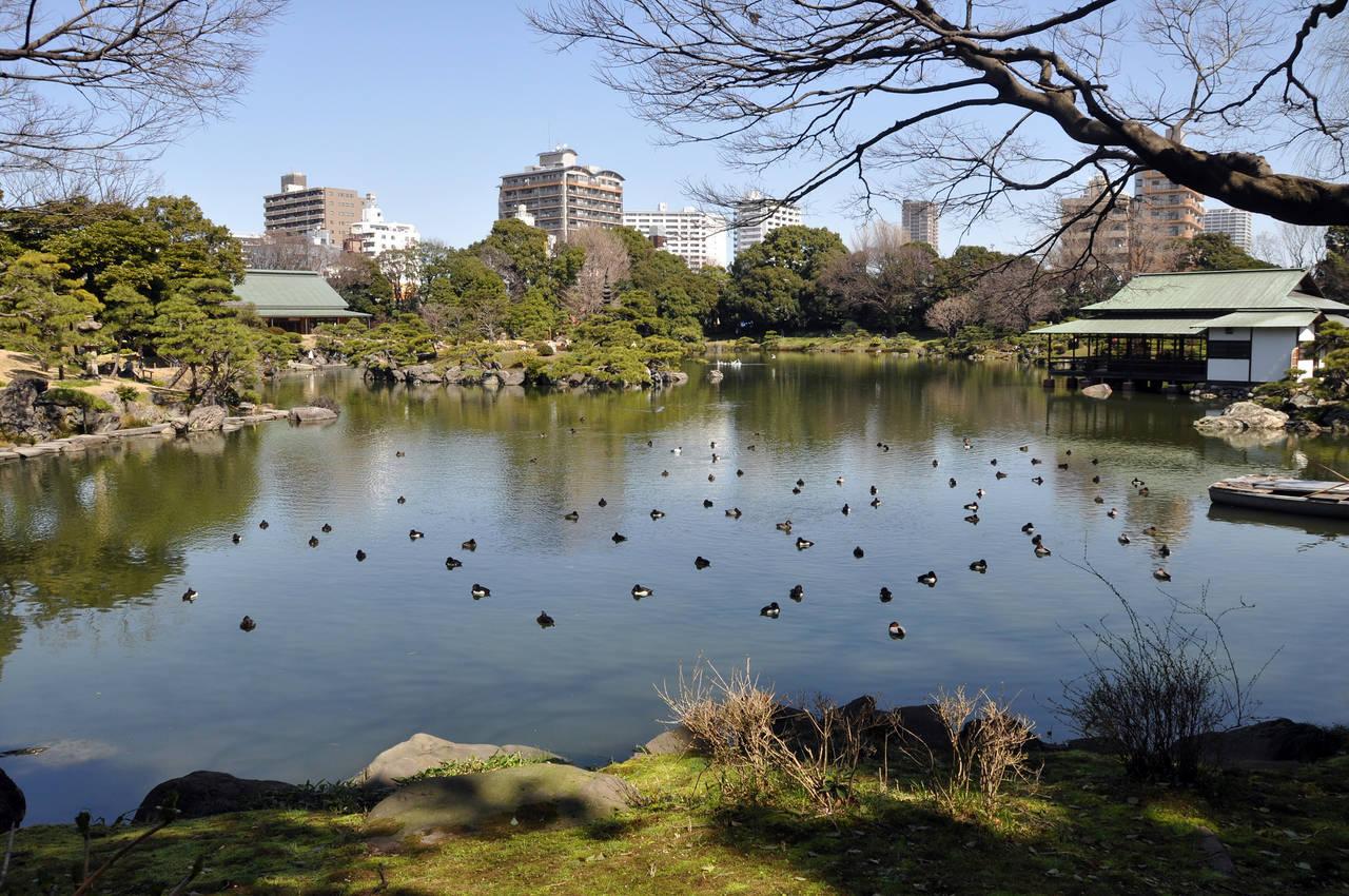 kiyosumi-shirakawa in tokyo