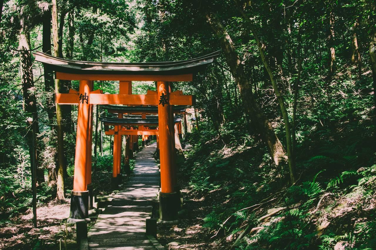 de route door het fushimi inari tempelcomplex