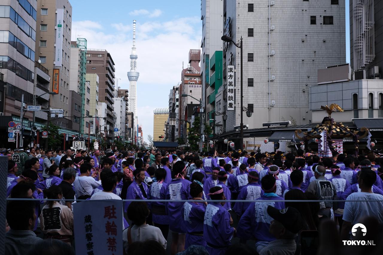 Sanja Matsuri festival Tokyo