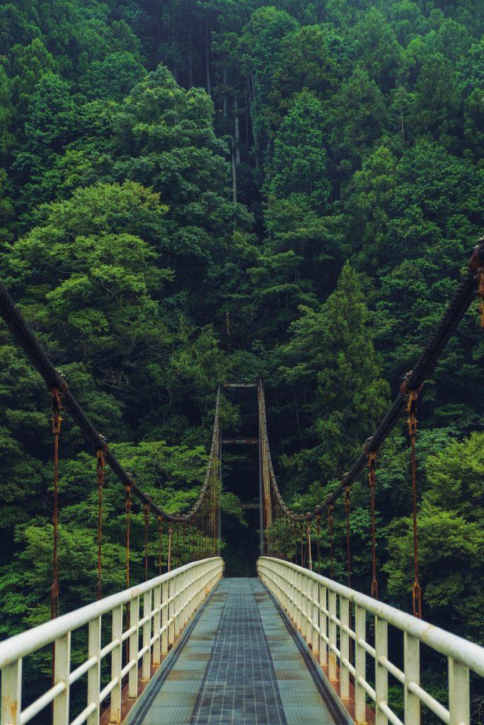 Hangbruggen in Shikoku Iya vallei