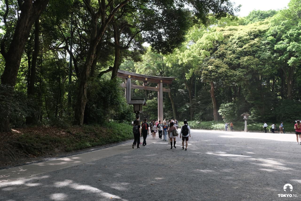 Meiji torri in het park