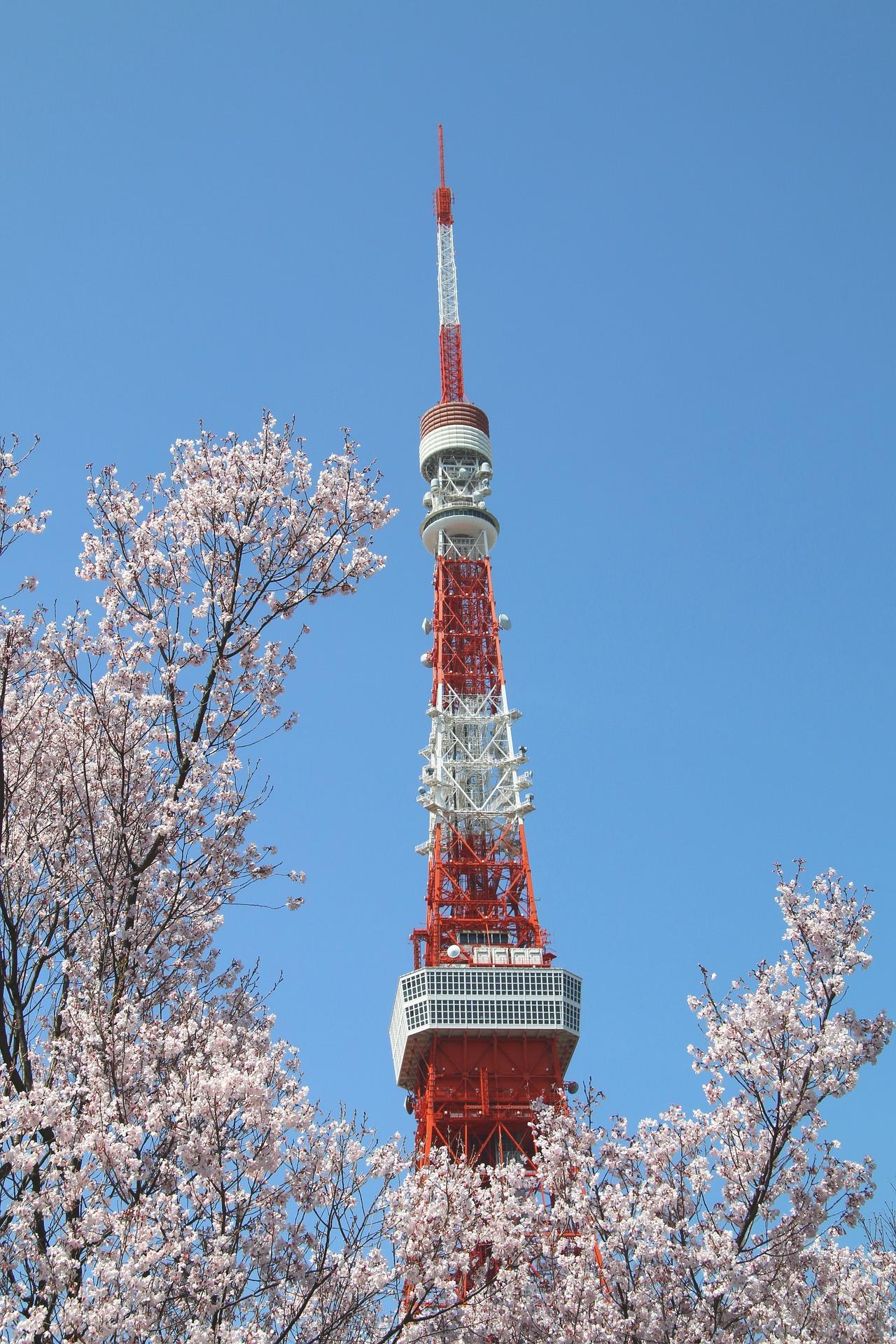 Tokyo Tower tijdens de sakura