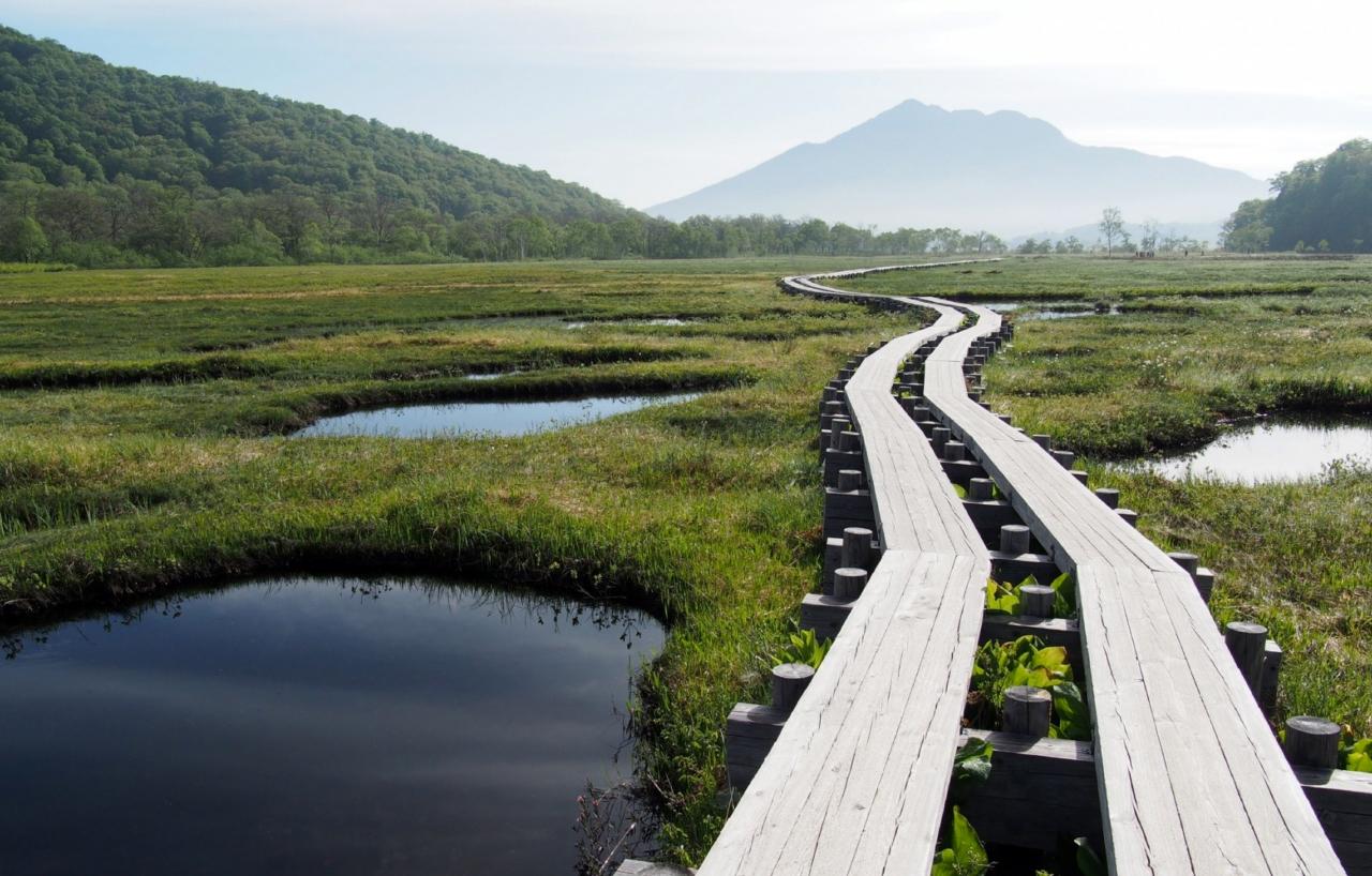 Oze National Park in Tohoku