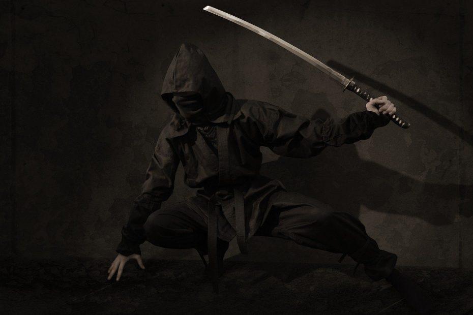 Ninja / Shinobi