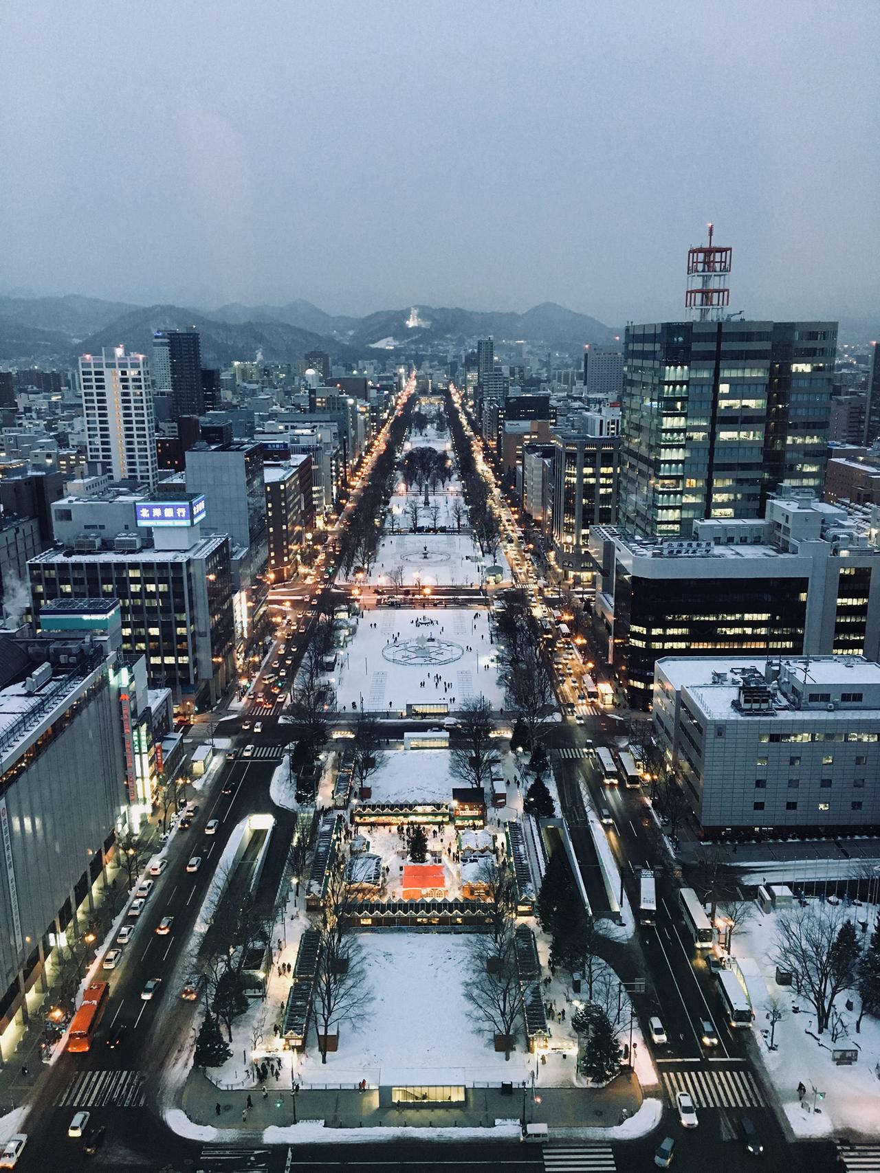 Odori Park vanaf Sapporo TV tower